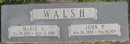 WALSH, JOHN P. - Saunders County, Nebraska | JOHN P. WALSH - Nebraska Gravestone Photos