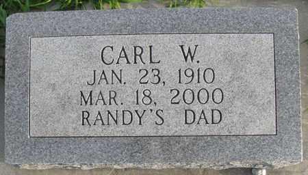 WENDT, CARL W. - Saunders County, Nebraska | CARL W. WENDT - Nebraska Gravestone Photos