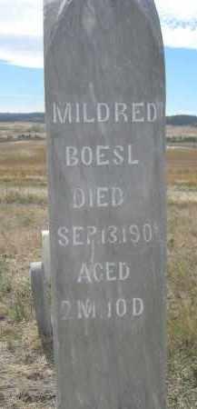 BOESL, MILDRED - Sioux County, Nebraska | MILDRED BOESL - Nebraska Gravestone Photos