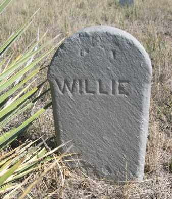 BOESL, WILLIE - Sioux County, Nebraska | WILLIE BOESL - Nebraska Gravestone Photos