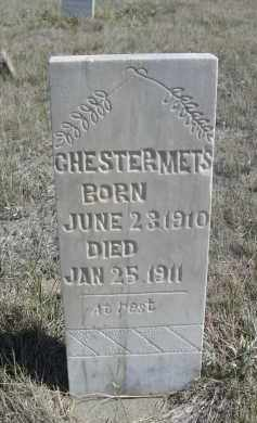 METS, CHESTER - Sioux County, Nebraska | CHESTER METS - Nebraska Gravestone Photos