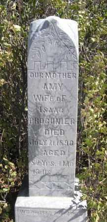 PROCUNIER, AMY - Sioux County, Nebraska   AMY PROCUNIER - Nebraska Gravestone Photos