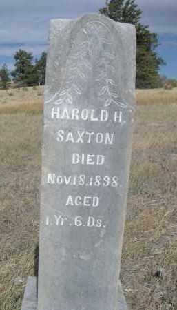 SAXTON, HAROLD H. - Sioux County, Nebraska | HAROLD H. SAXTON - Nebraska Gravestone Photos