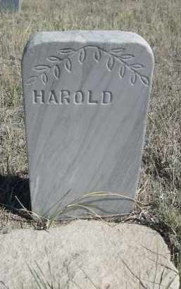 SAXTON, HAROLD - Sioux County, Nebraska   HAROLD SAXTON - Nebraska Gravestone Photos