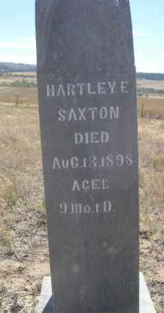SAXTON, HARTLEY E. - Sioux County, Nebraska | HARTLEY E. SAXTON - Nebraska Gravestone Photos
