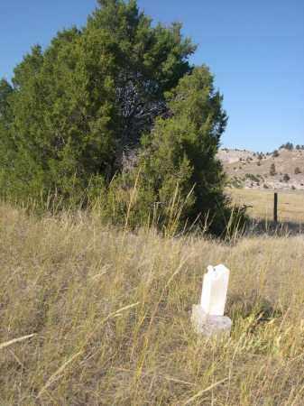WATSON, ARGILE - Sioux County, Nebraska | ARGILE WATSON - Nebraska Gravestone Photos