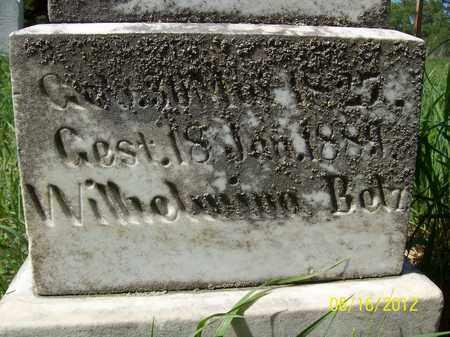 BELZ, WILHELMINA - Stanton County, Nebraska | WILHELMINA BELZ - Nebraska Gravestone Photos