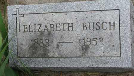 BUSCH, ELIZABETH - Stanton County, Nebraska | ELIZABETH BUSCH - Nebraska Gravestone Photos