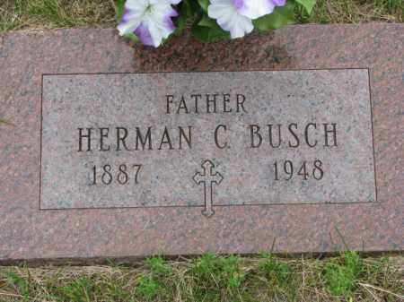 BUSCH, HERMAN C. - Stanton County, Nebraska | HERMAN C. BUSCH - Nebraska Gravestone Photos