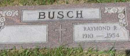 BUSCH, RAYMOND R. - Stanton County, Nebraska   RAYMOND R. BUSCH - Nebraska Gravestone Photos