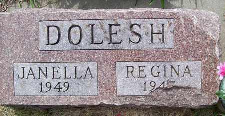 DOLESH, JANELLA - Stanton County, Nebraska   JANELLA DOLESH - Nebraska Gravestone Photos