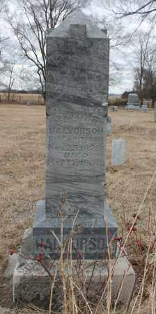 HALVORSON, HALVOR - Stanton County, Nebraska | HALVOR HALVORSON - Nebraska Gravestone Photos
