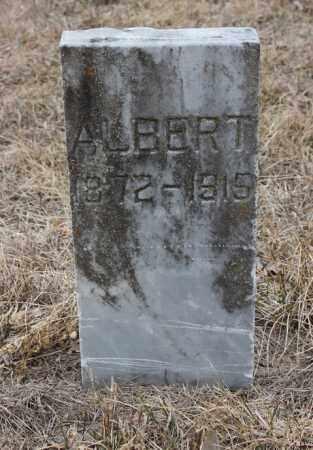 JOHNSON, ALBERT - Stanton County, Nebraska | ALBERT JOHNSON - Nebraska Gravestone Photos