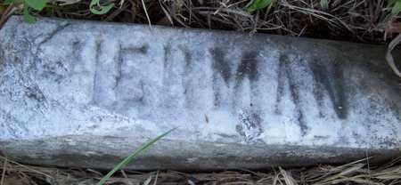 KRENZIEN, HERMAN - Stanton County, Nebraska   HERMAN KRENZIEN - Nebraska Gravestone Photos