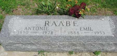 RAABE, EMIL - Stanton County, Nebraska | EMIL RAABE - Nebraska Gravestone Photos