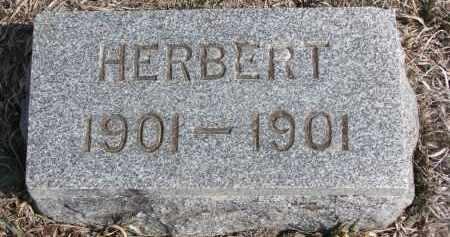 RAABE, HERBERT - Stanton County, Nebraska | HERBERT RAABE - Nebraska Gravestone Photos