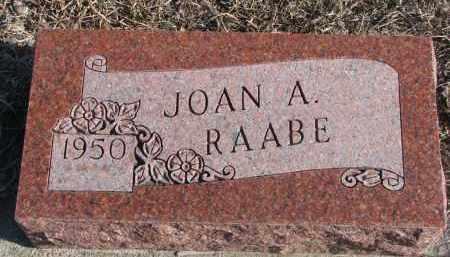 RAABE, JOAN A. - Stanton County, Nebraska | JOAN A. RAABE - Nebraska Gravestone Photos