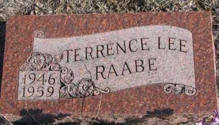 RAABE, TERRENCE LEE - Stanton County, Nebraska | TERRENCE LEE RAABE - Nebraska Gravestone Photos
