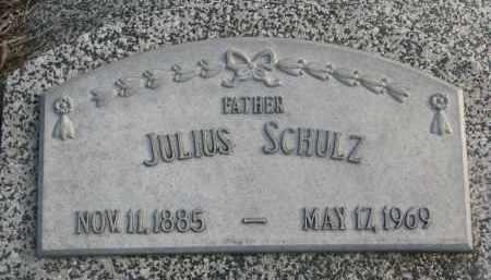SCHULZ, JULIUS - Stanton County, Nebraska | JULIUS SCHULZ - Nebraska Gravestone Photos