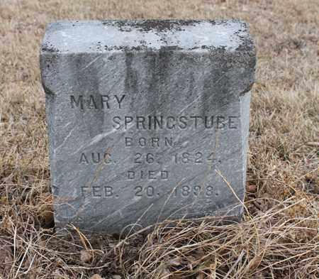 SPRINGSTUBE, MARY - Stanton County, Nebraska | MARY SPRINGSTUBE - Nebraska Gravestone Photos