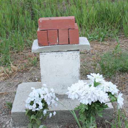 STARLIPER, FAMILY PLOT - Stanton County, Nebraska | FAMILY PLOT STARLIPER - Nebraska Gravestone Photos