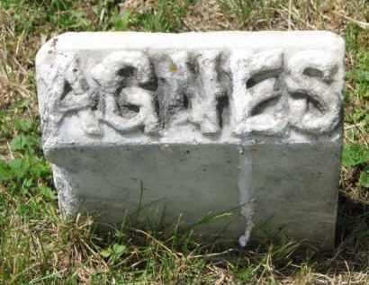 TEJKL, AGNES - Stanton County, Nebraska | AGNES TEJKL - Nebraska Gravestone Photos