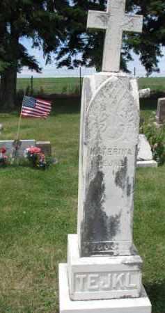 TEJKL, KATERINA - Stanton County, Nebraska | KATERINA TEJKL - Nebraska Gravestone Photos