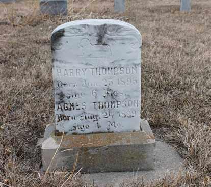THOMPSON, HARRY - Stanton County, Nebraska | HARRY THOMPSON - Nebraska Gravestone Photos