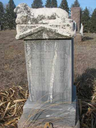 UNKNOWN, AMELIA - Stanton County, Nebraska | AMELIA UNKNOWN - Nebraska Gravestone Photos
