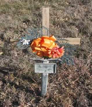 UNKNOWN, GUNNAR - Stanton County, Nebraska   GUNNAR UNKNOWN - Nebraska Gravestone Photos