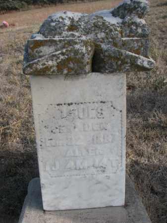 UNKNOWN, LOUES - Stanton County, Nebraska | LOUES UNKNOWN - Nebraska Gravestone Photos
