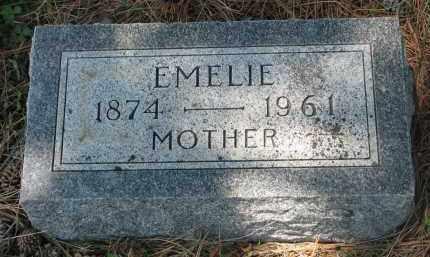 WITTGOW, EMELIE - Stanton County, Nebraska   EMELIE WITTGOW - Nebraska Gravestone Photos