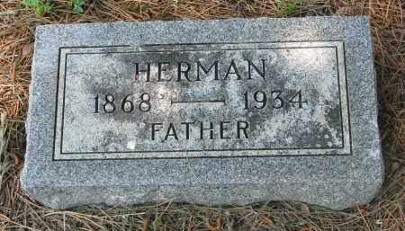 WITTGOW, HERMAN - Stanton County, Nebraska | HERMAN WITTGOW - Nebraska Gravestone Photos
