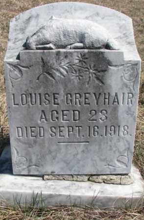 GREYHAIR, LOUISE - Thurston County, Nebraska | LOUISE GREYHAIR - Nebraska Gravestone Photos