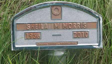 MORRIS, SHEILA M. - Thurston County, Nebraska   SHEILA M. MORRIS - Nebraska Gravestone Photos