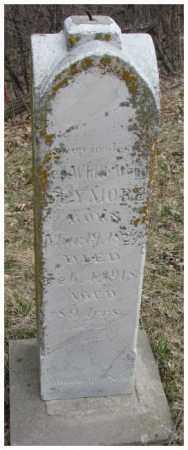 SEYMOUR, GEORGE WHITEWOOD - Thurston County, Nebraska | GEORGE WHITEWOOD SEYMOUR - Nebraska Gravestone Photos