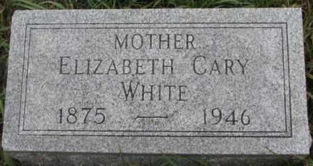 WHITE, ELIZABETH - Thurston County, Nebraska | ELIZABETH WHITE - Nebraska Gravestone Photos