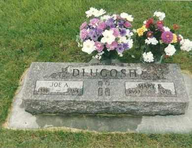 DLUGOSH, MARY E - Valley County, Nebraska   MARY E DLUGOSH - Nebraska Gravestone Photos