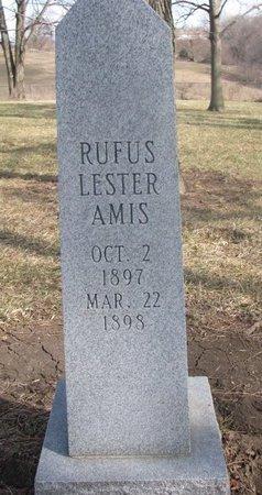 AMIS, RUFUS LESTER - Washington County, Nebraska | RUFUS LESTER AMIS - Nebraska Gravestone Photos
