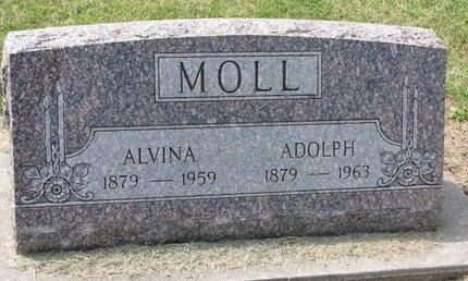 MUELLER MOLL, ALVINA - Washington County, Nebraska | ALVINA MUELLER MOLL - Nebraska Gravestone Photos