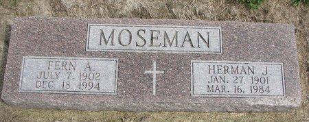 MOSEMAN, FERN A. - Washington County, Nebraska | FERN A. MOSEMAN - Nebraska Gravestone Photos
