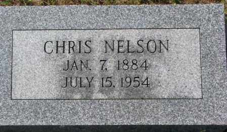 NELSON, CHRIS - Washington County, Nebraska | CHRIS NELSON - Nebraska Gravestone Photos