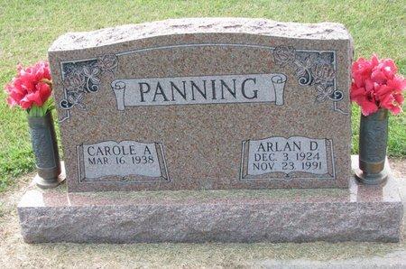 PANNING, CAROLE A. - Washington County, Nebraska | CAROLE A. PANNING - Nebraska Gravestone Photos