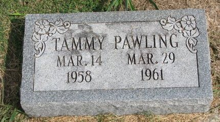 PAWLING, TAMMY - Washington County, Nebraska   TAMMY PAWLING - Nebraska Gravestone Photos