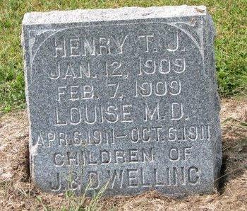 WELLING, HENRY T.J. - Washington County, Nebraska   HENRY T.J. WELLING - Nebraska Gravestone Photos