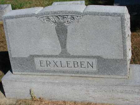 ERXLEBEN, FAMILY STONE - Wayne County, Nebraska | FAMILY STONE ERXLEBEN - Nebraska Gravestone Photos