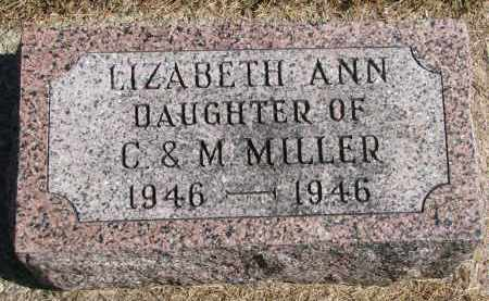 MILLER, LIZABETH ANN - Wayne County, Nebraska | LIZABETH ANN MILLER - Nebraska Gravestone Photos