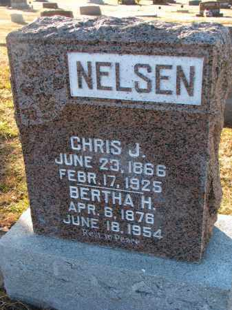 NELSEN, CHRIS J. - Wayne County, Nebraska | CHRIS J. NELSEN - Nebraska Gravestone Photos