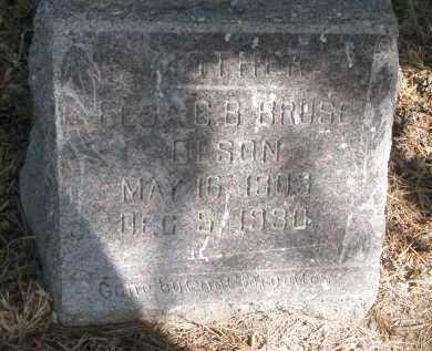 OLSON, ELSA C.B. - Wayne County, Nebraska | ELSA C.B. OLSON - Nebraska Gravestone Photos