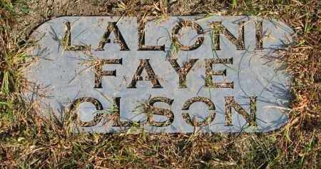 OLSON, LALONI FAYE - Wayne County, Nebraska | LALONI FAYE OLSON - Nebraska Gravestone Photos
